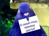 Светлана Зайцева, 1 декабря , id51208142